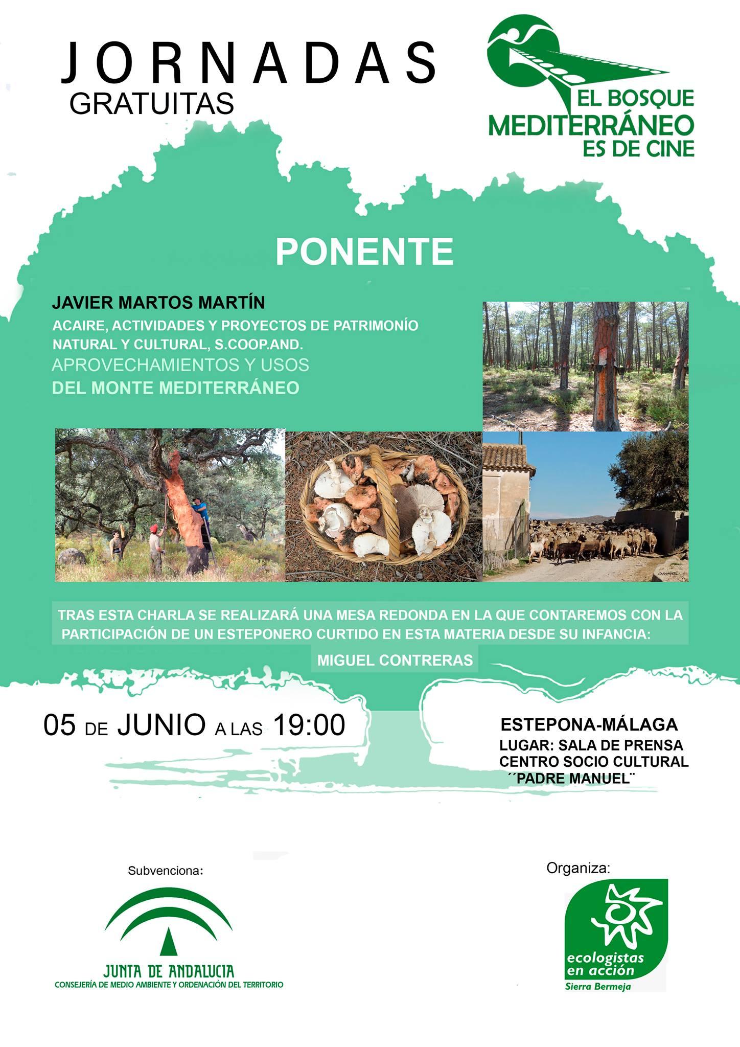 Usos y aprovechamientos del bosque mediterráneo