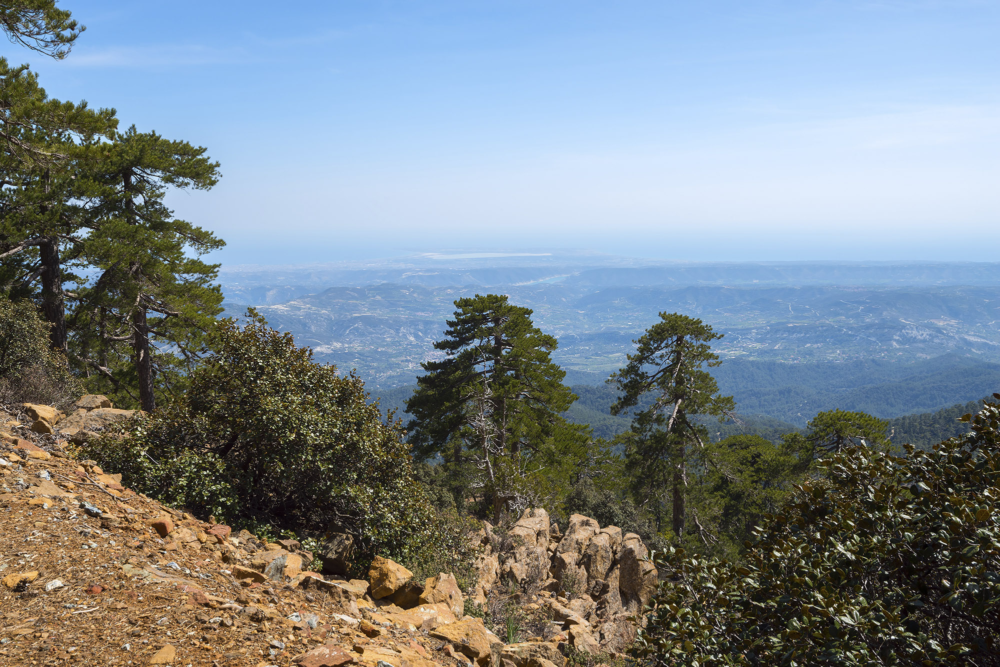 Troodos National Forest Park (Chipre)
