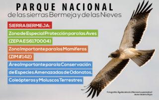 Parque Nacional de las sierras Bermeja y de las Nieves