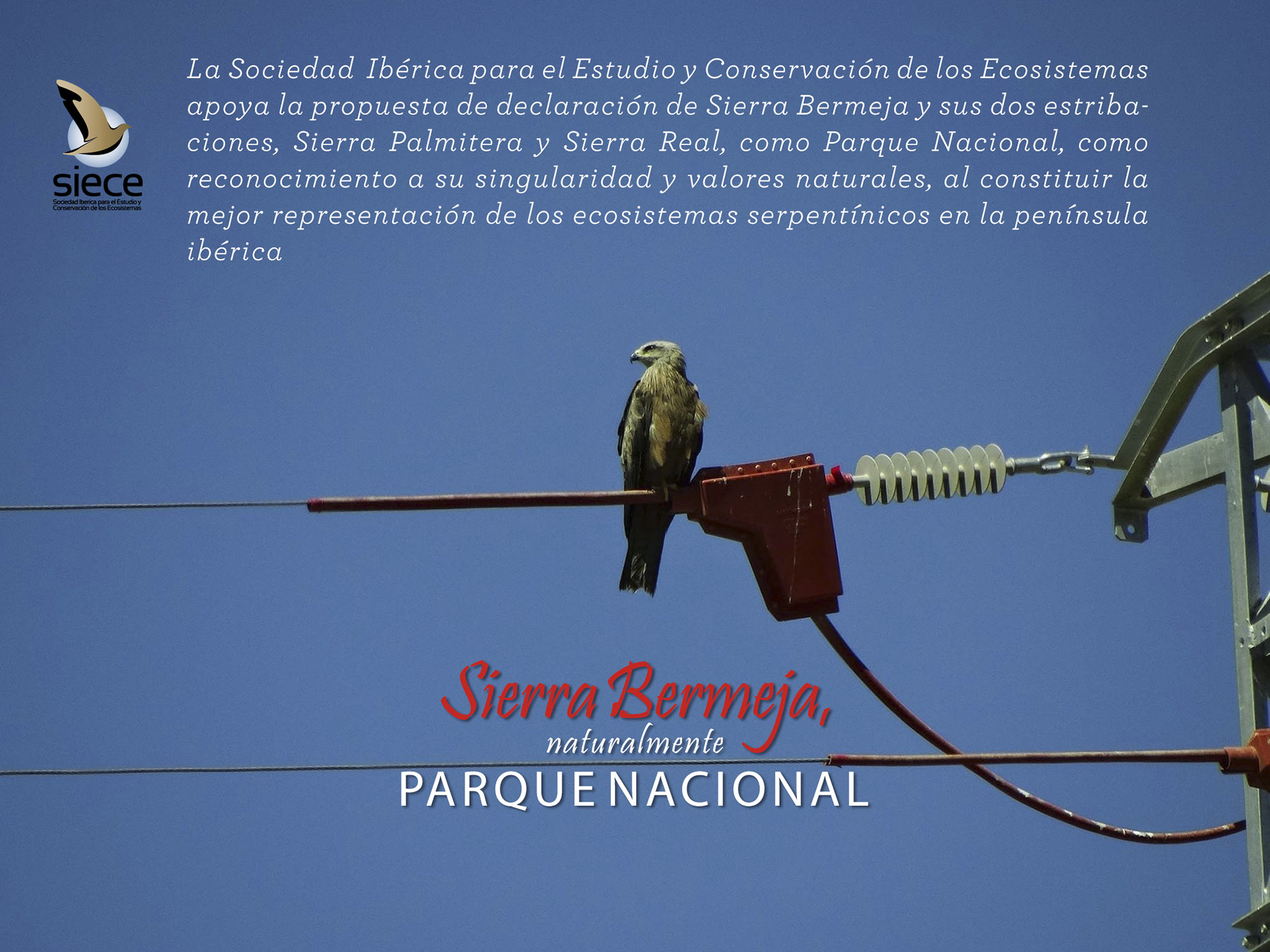 Sociedad Ibérica para el Estudio y Conservación de los Ecosistemas (SIECE)