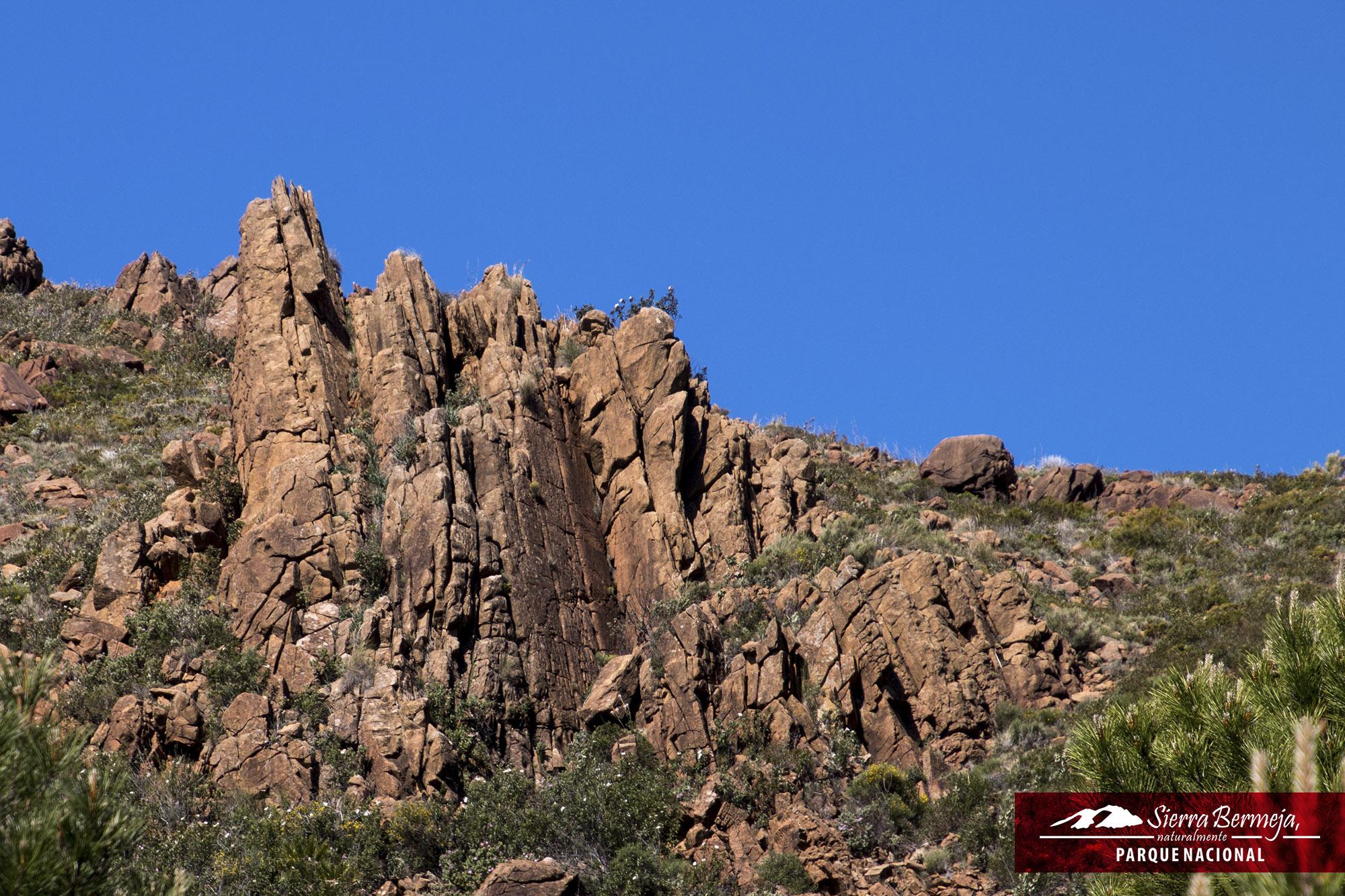 Las peridotitas de Sierra Bermeja. La mejor representación de los ecosistemas serpentínicos en España