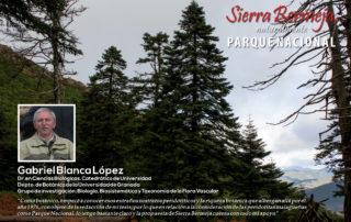 Gabriel Blanca apoya Sierra Bermeja Parque Nacional