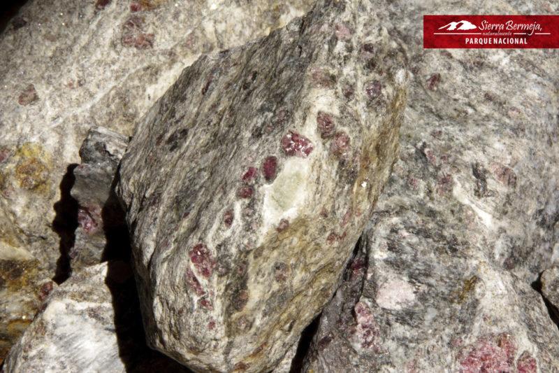 Granates sobre gneises