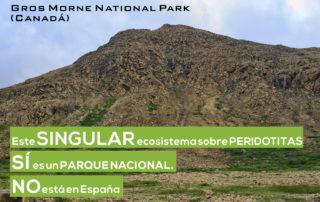 Ecosistemas serpentínicos: Gros Morne