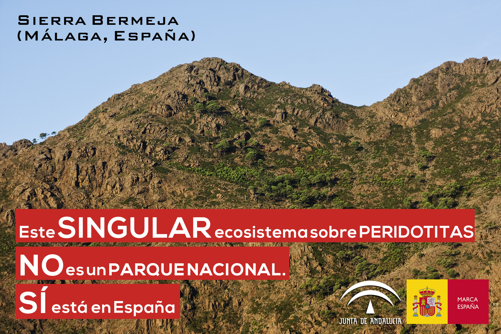 Ecosistemas serpentínicos: Sierra Bermeja