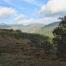 Cumbres de Sierra Palmitera desde Daidín