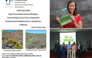 Tesis doctoral Noelia Hidalgo Triana