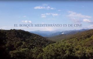 El Bosque Mediterráneo es de Cine