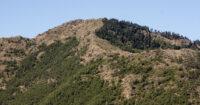 Cerro del Castellón, Sierra Bermeja