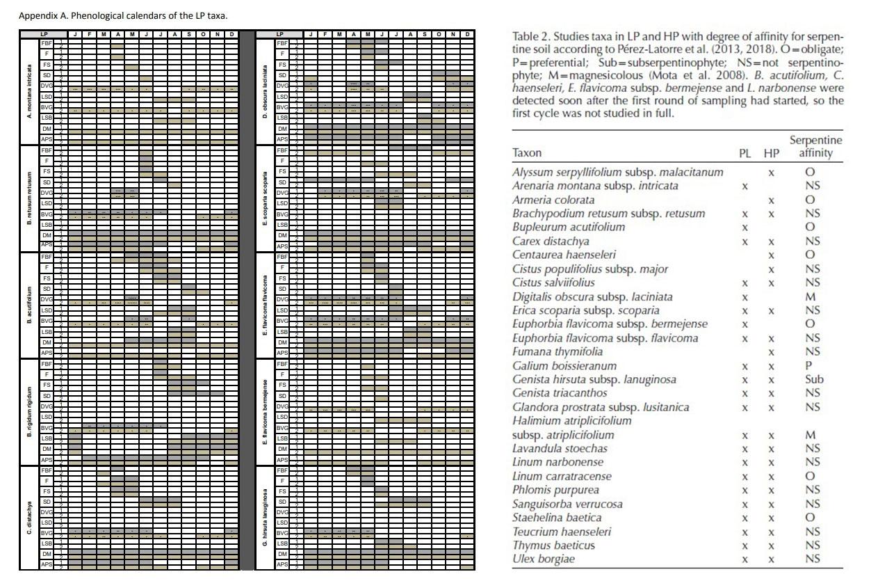 fenología anual de matorrales sobre serpentinas