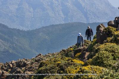 Zonas Internas (Sierra Bermeja) y Externas (Parque Natural Sierra de las Nieves) de la Cordillera Bética