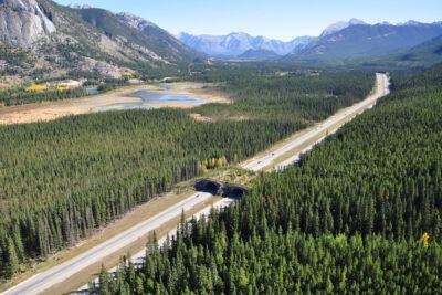 Autopista transcandiense a su paso por el Parque Nacional Banff (Canadá)