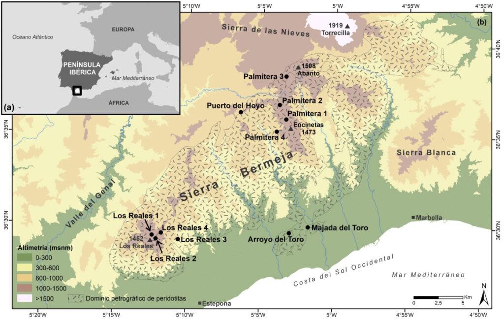 Análisis pedoantracológico de Pinus Pinaster en Sierra Bermeja