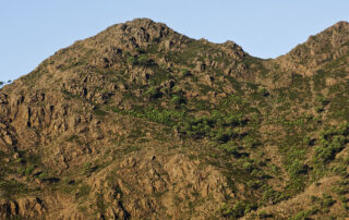 Morrón del Zagalete (Sierra Bermeja, Málaga)