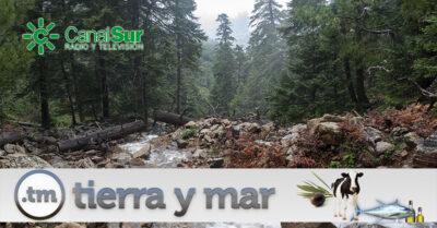 Sierra Bermeja en Tierra y Mar