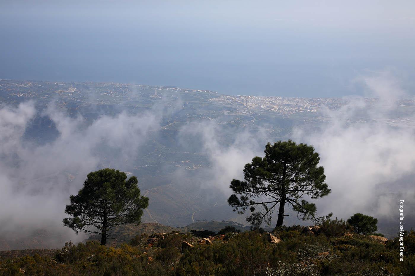 Sierra Bermeja (Autor: José Aragón Bracho)