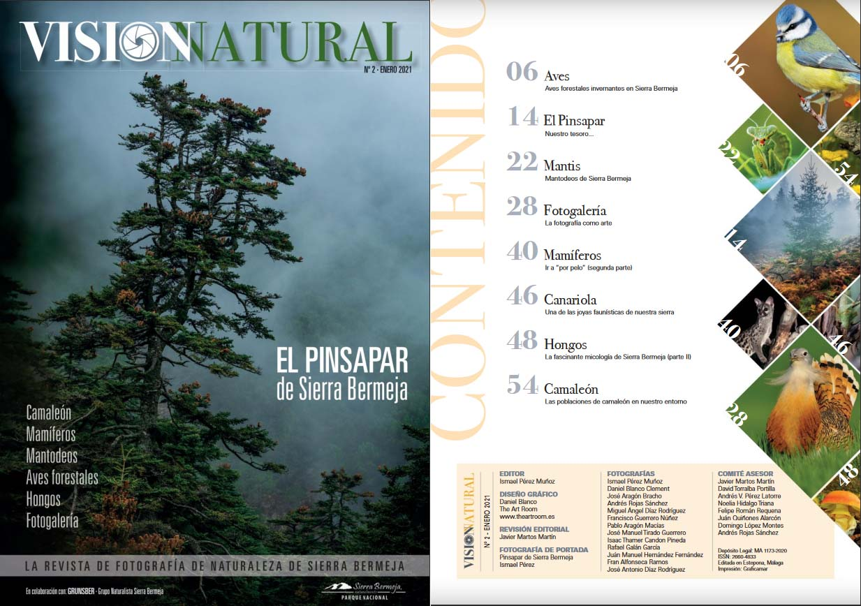 Visión Natural N2