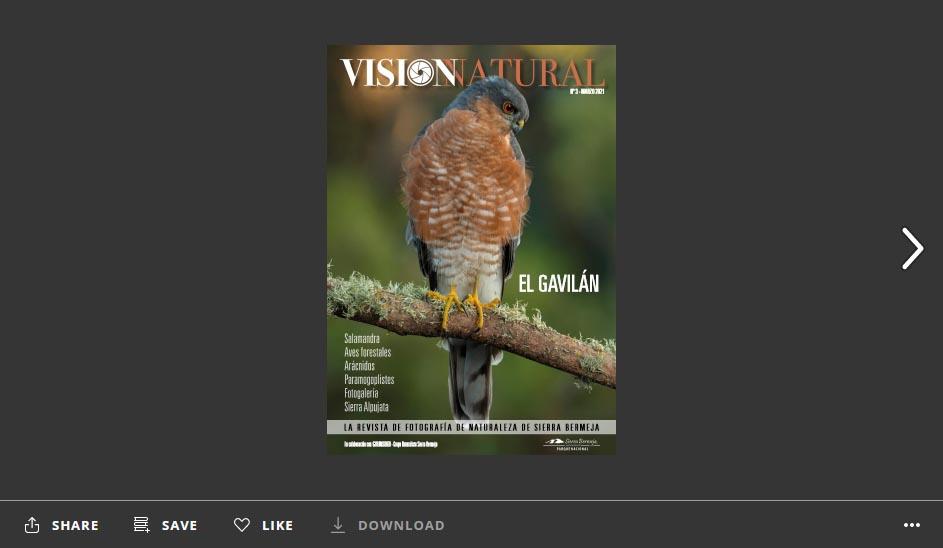 Visión Natural núm.3. Versión online