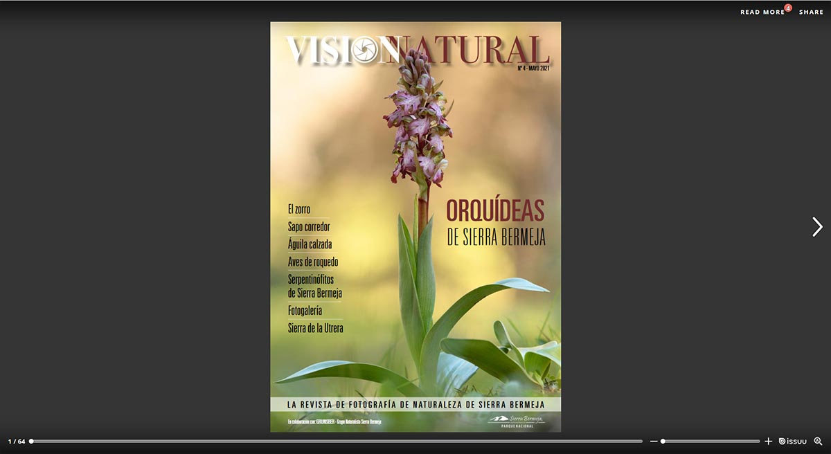 Visión Natural núm.4. Versión online