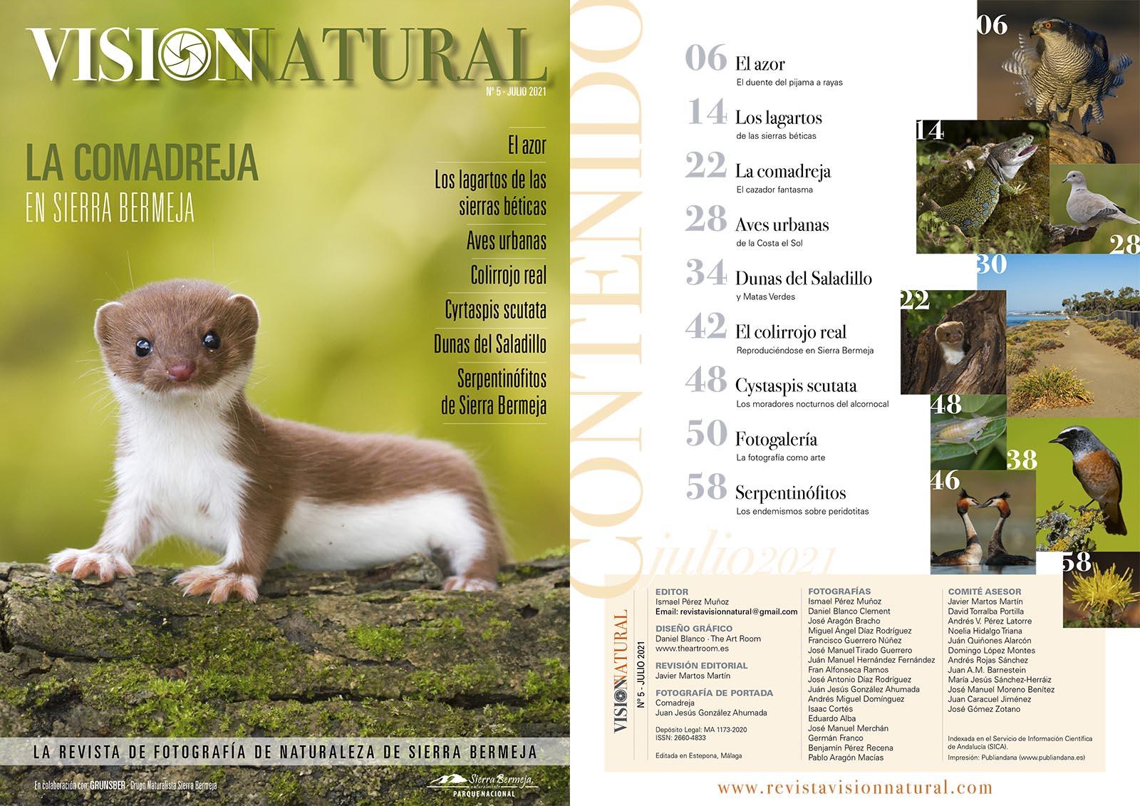 Visión Natural núm. 5