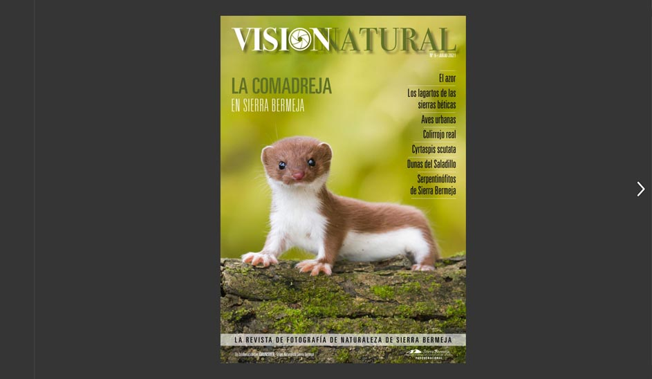 Visión Natural núm.5. Versión online