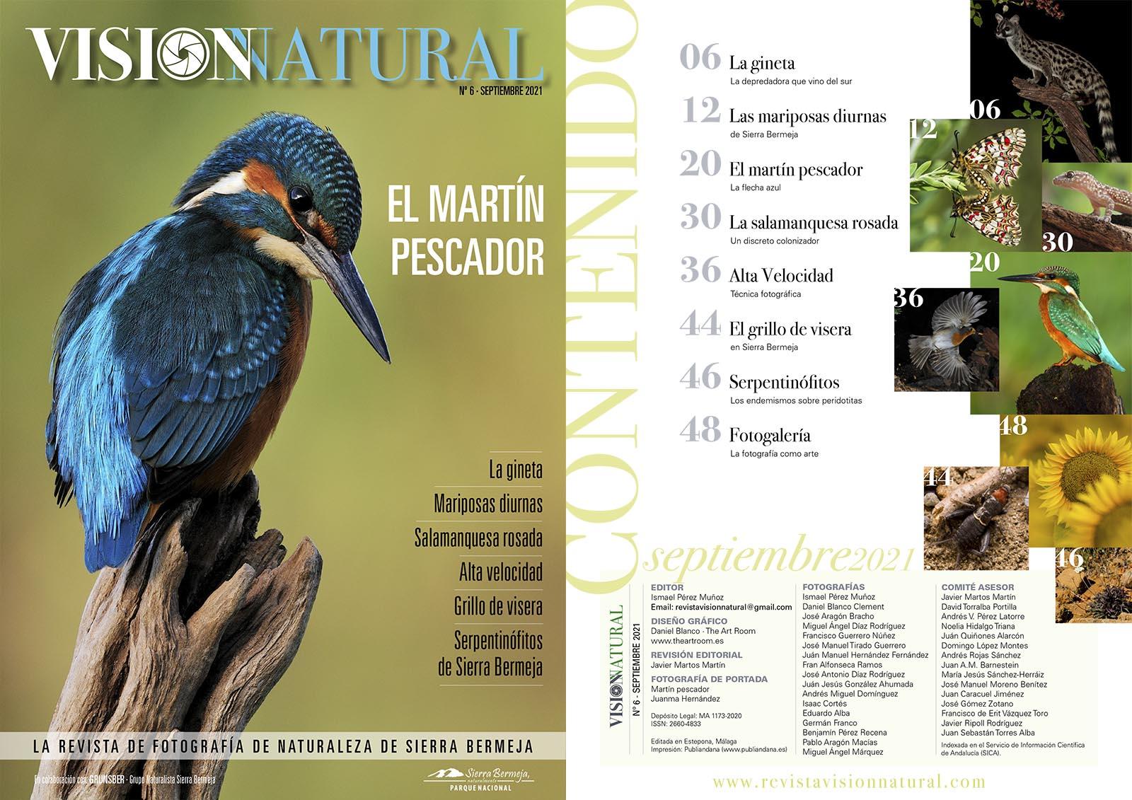 Visión Natural núm. 6