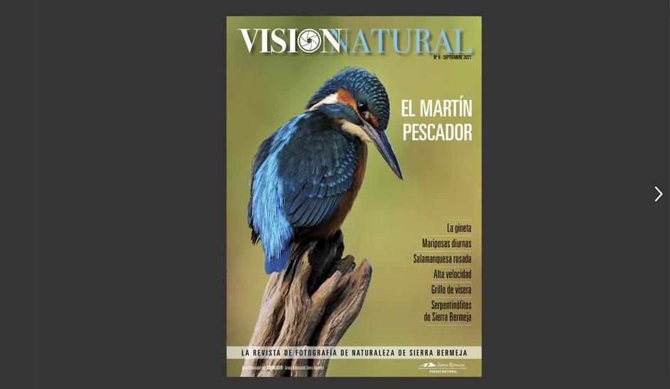 Visión Natural núm.6. Versión online